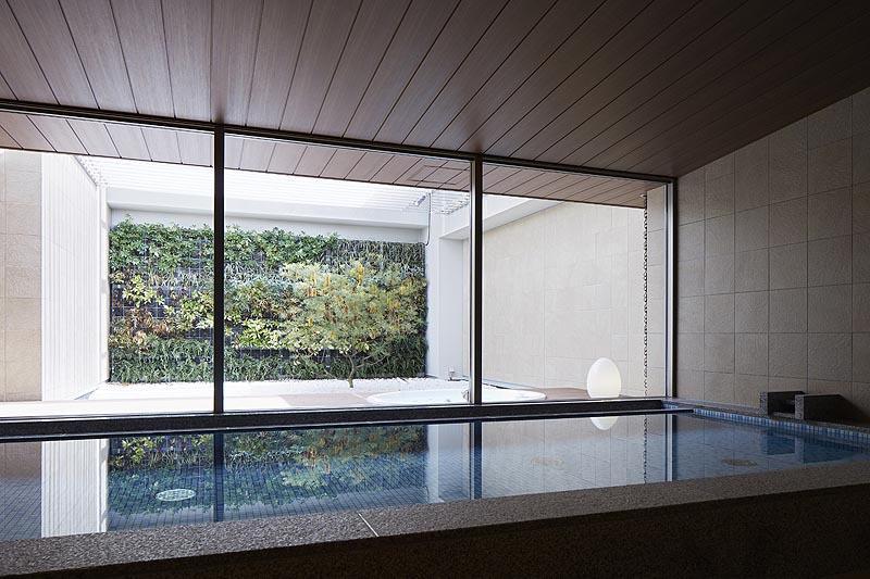 Сад в японском стиле онсэн